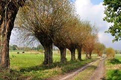 Polish Landscape Stock Images