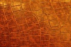 Polish Leather Royalty Free Stock Photos