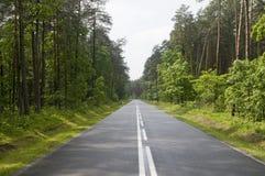 Polish local road Royalty Free Stock Image