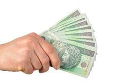 Polish Money Royalty Free Stock Images