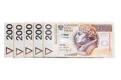 Polish money. A lot of polish money Stock Image