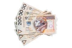 Polish money. A lot of polish money Royalty Free Stock Image