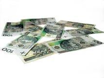 Polish money. Isolated on white Royalty Free Stock Photos