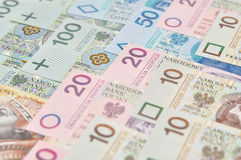 Polish  money background. Stock Image