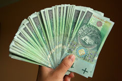Polish Money in hand Royalty Free Stock Image