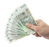 Polish money in hand. Clipping path included. Polish money in hand isolated on white background. Clipping path included Stock Photography