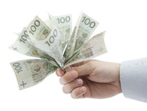 Polish money in hand. Clipping path included. Stock Photos