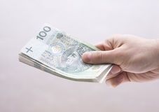 Polish money in hand Royalty Free Stock Photo