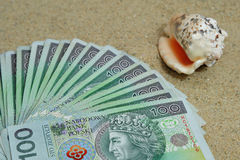 Polish  money inside on sand with sea shell. Polish  money inside on the beach with sea shell Stock Images