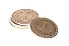 Polish money isolated Royalty Free Stock Photos