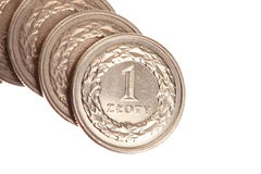 Polish money isolated Royalty Free Stock Photography
