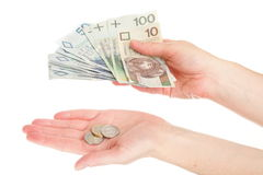 Polish money isolated in hand Stock Photos