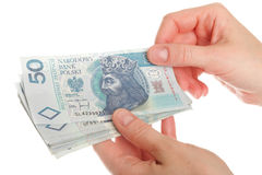 Polish money isolated in hand Royalty Free Stock Images