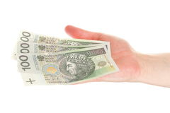 Polish money isolated in hand Royalty Free Stock Photo