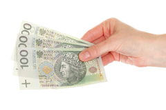 Polish money isolated in hand Stock Images