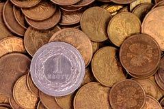 Polish money - PLN Stock Image