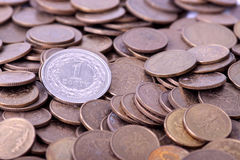 Polish money - PLN Royalty Free Stock Image