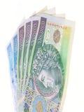 Polish money PLN zloty isolated Stock Photography