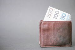 Polish money in a wallet Stock Images