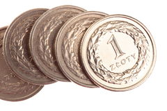 Polish money - zloty isolated  Royalty Free Stock Images