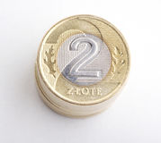 Polish money - zloty isolated on white background Royalty Free Stock Image