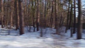 Polish outskirts winter scenery seen from train window. 4K video stock footage