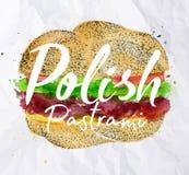 Polish pastrami burger Royalty Free Stock Photo