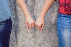 Polish people person concept. Close up photo of beautiful charming cute lovely beautiful cool swag attractive girls holding touch royalty free stock photos