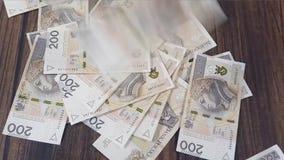 Polish PLN Zloty. Spreading banknotes stock footage