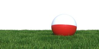 Polish Poland flag soccer ball lying in grass world cup 2018. Isolated on white background. 3D Rendering, Illustration Royalty Free Stock Image
