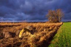Polish rural landscape. Royalty Free Stock Images