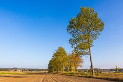 Polish rural landscape with autumnal fields at good weather Royalty Free Stock Photography