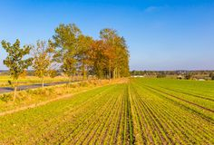Polish rural landscape with autumnal fields at good weather Royalty Free Stock Photo
