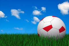 Polish soccer ball Royalty Free Stock Photos