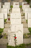 Polish soldiers war cemetery, Vilnius Royalty Free Stock Photo