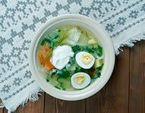 Polish Sorrel Soup Royalty Free Stock Photography