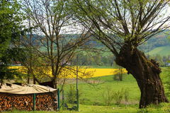 Polish spring landscape. Royalty Free Stock Photography