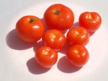 Polish tomatoes. Royalty Free Stock Photo