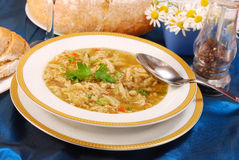 Polish tripe soup (flaki). Traditional polish tripe soup with vegetables in white plate royalty free stock image