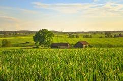 Polish village Landscape Royalty Free Stock Photography