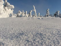 Polish winter. Winter in polish mountains. Snow on trees Royalty Free Stock Image