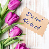 Polish Women's Day card and a bouquet of beautiful tulips Stock Photography