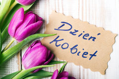 Polish Women's Day card and a bouquet of beautiful tulips Royalty Free Stock Image