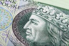 Polish Zloty. Banknote 100 PLN - Polish Zloty royalty free stock photos