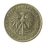 20 polish zloty coin 1987 reverse. Isolated on white background stock photo