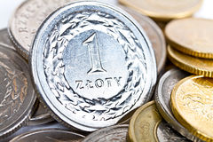 Polish zloty coins. Close up of Polish zloty coins Stock Photos