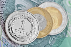 Polish zloty Royalty Free Stock Photo