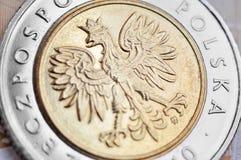 Polish zloty Stock Photo