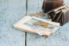 Polish zloty with little wallets and notebook on the wooden background Stock Photos