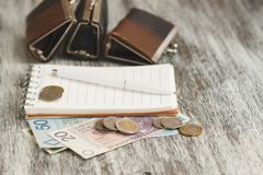 Polish zloty with little wallets and notebook on the wooden background Royalty Free Stock Photos